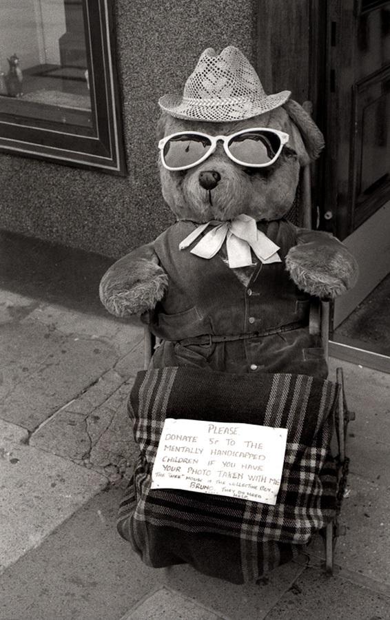 teddy-hamm-brighton-3-900